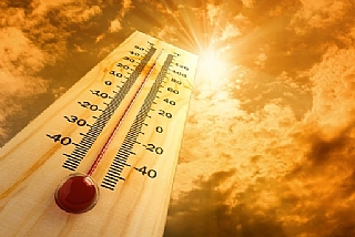 חיישני טמפרטורה / רגש טמפרטורה